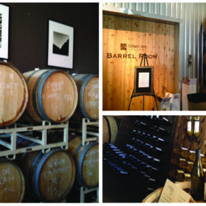 Girls Day: Dallas Wine Trails