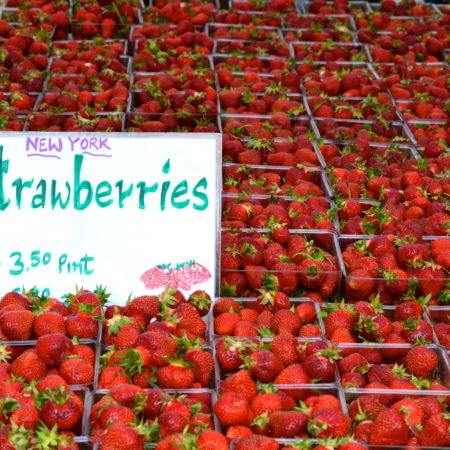 strawberries at nyc farmers market