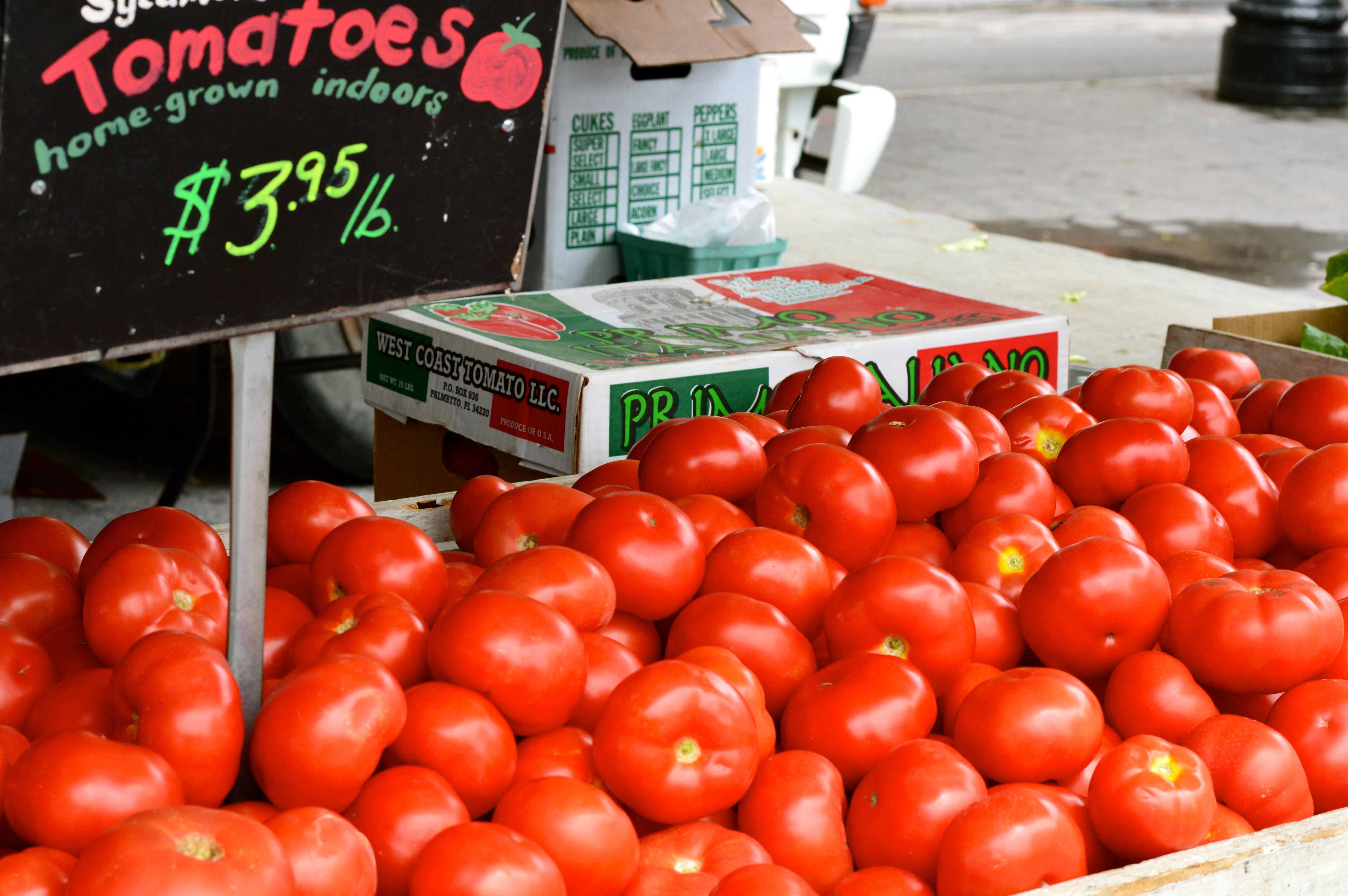 tomatoes at nyc farmers market