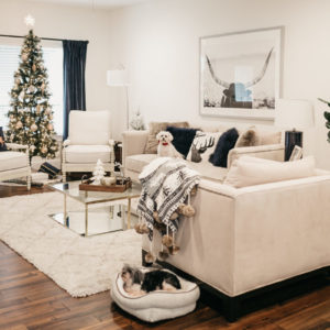 COZY AT HOME FOR THE HOLIDAYS