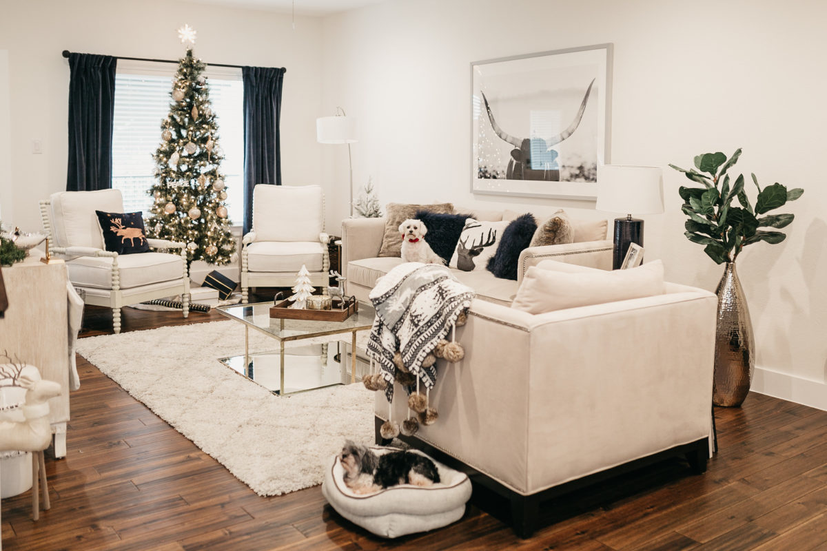 dog in a living room with christmas decorations