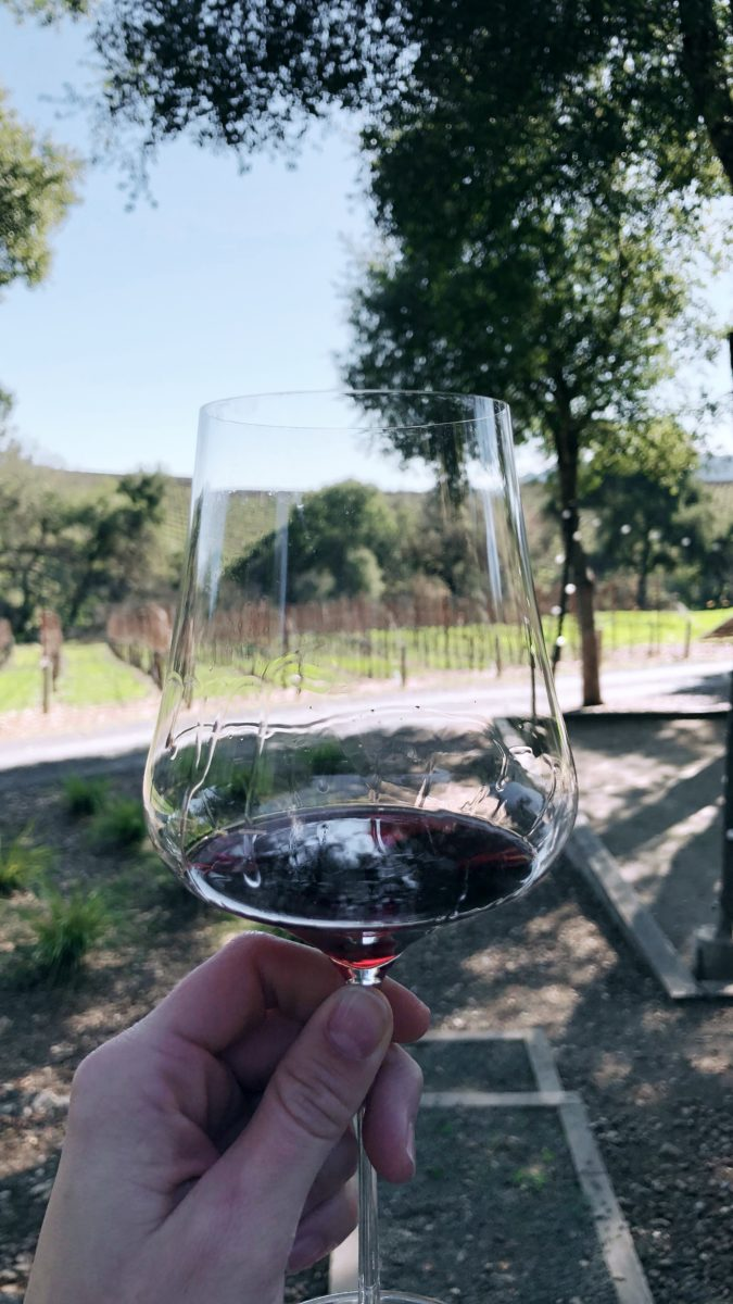wine drinker, wineo, wine adventures